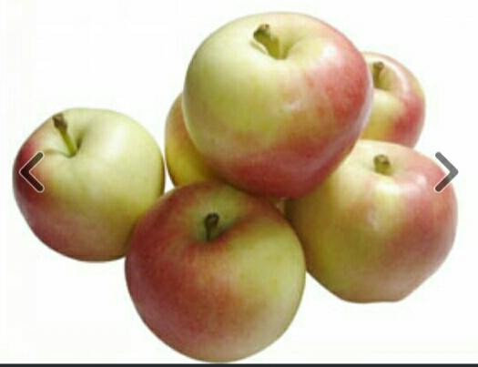 河南省三門峽市靈寶市靈寶蘋果