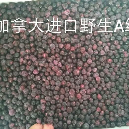 浙江省紹興市諸暨市速凍藍莓