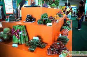 第十届甘肃农业博览会