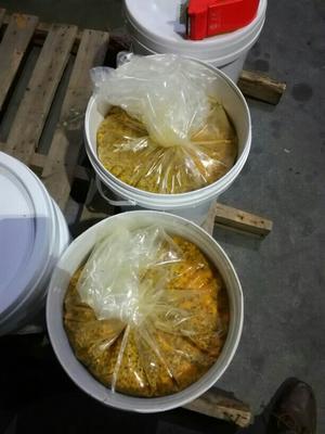 百香果汁 袋装 6-12个月