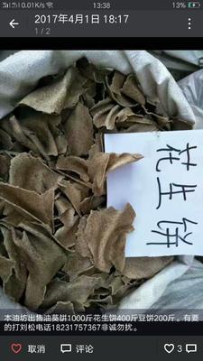 河北省沧州市青县花生碎