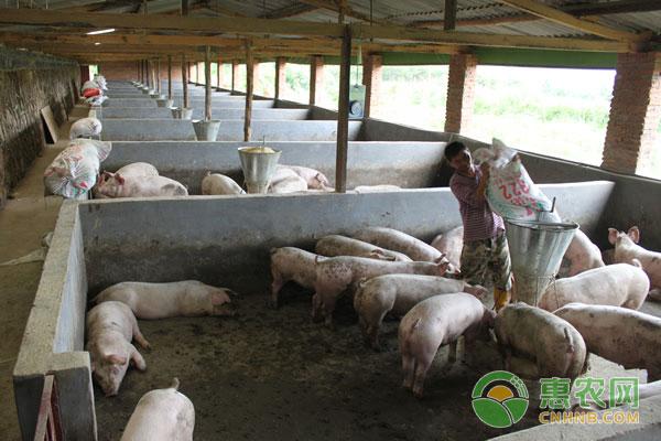 猪场粪污处理技术