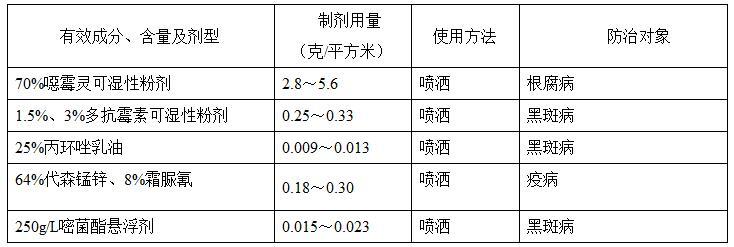 33彩票网站 10