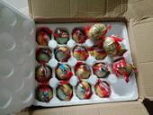 海鴨蛋 食用 箱裝
