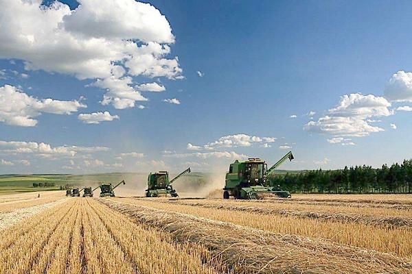 农村政策:农村5类经营主体将得到国家帮扶!
