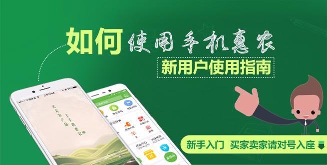 新用户必备宝典:如何使用手机惠农?