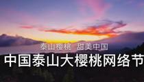 惠农网2017中国泰山大樱桃网络节