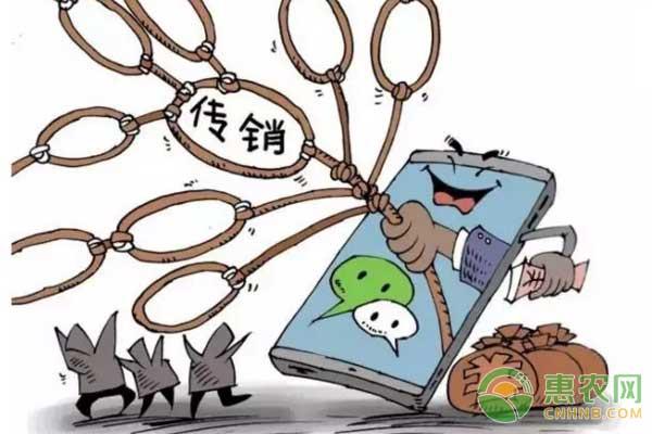 """农民朋友注意:传销正伪装成""""农村电商""""诈骗"""