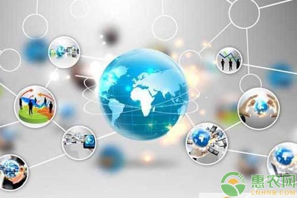 农产品如何利用网络销售?
