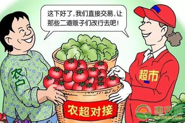 农业营销模式