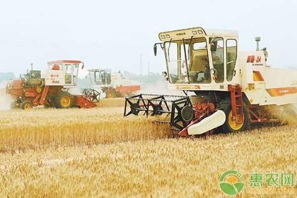"""粮食补贴新政策:这些""""农户""""将被列入黑名单"""