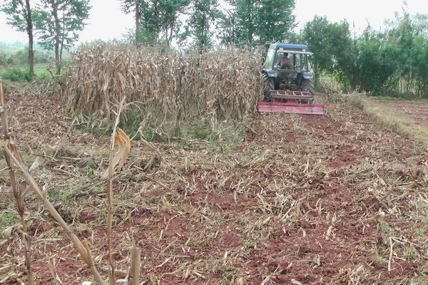 明年农业补贴出现重大改革,农民切身利益获得重要体现