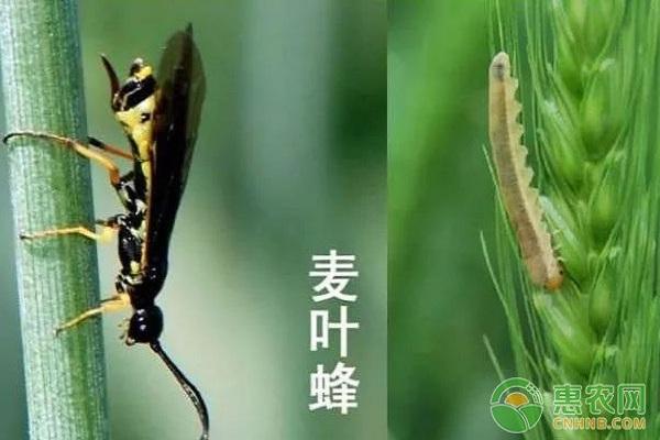 十博体育官网最新网站 14