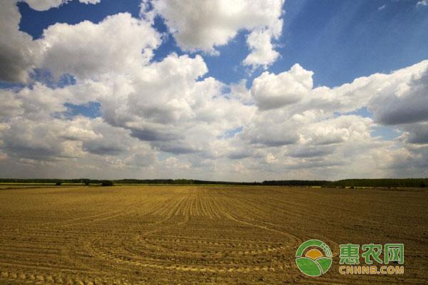 领取土地承包政策补贴,需要符合哪些条件?