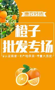 这是一张橙子的展示图片