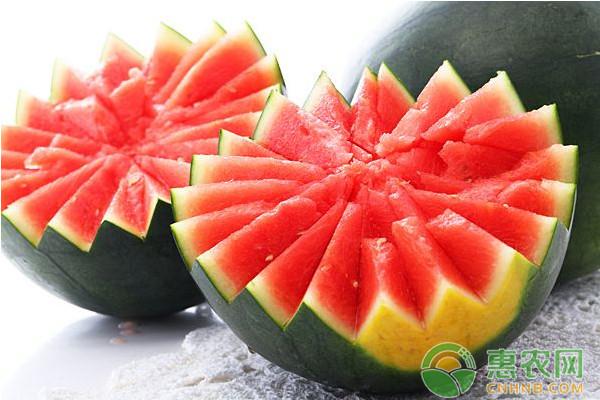 浅谈西瓜栽培各阶段的常见问题及其解决方法