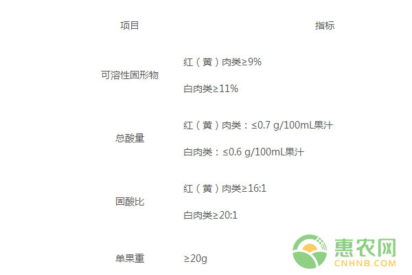 三潭枇杷:中国农产品地理标志产品三潭枇杷图文百科