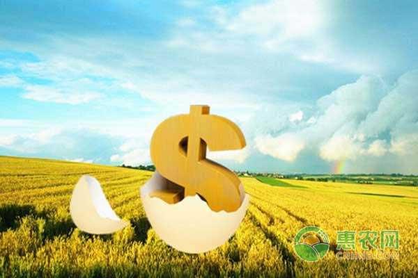 农业贷款怎样快速轻松拿?2018年农业贷款政策申请指南