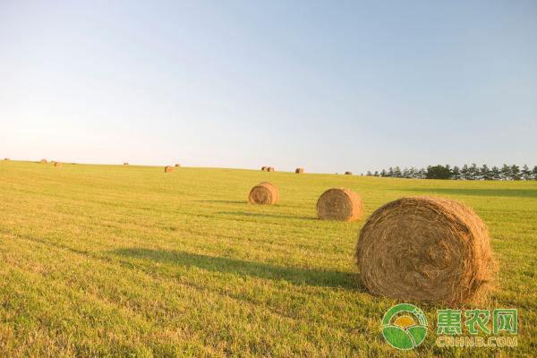哪几种类型的人将会被取消农业补贴呢?
