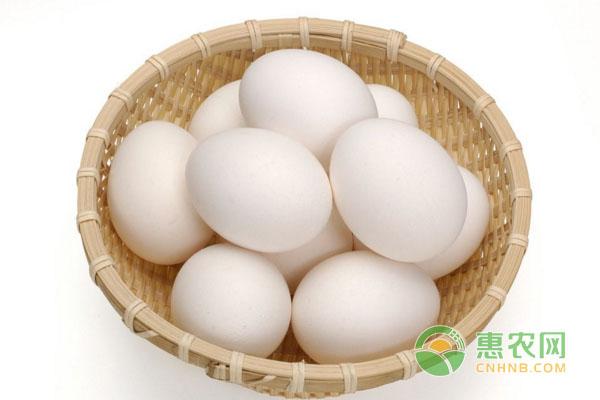 3月13日全国<a rel='nofollow' href='http://www.cnhnb.com/p/jidan/' rel='nofollow' target='_blank'><span style='color:#FF8000'>鸡蛋</span></a>价格行情:蛋价涨势趋缓,即将破三