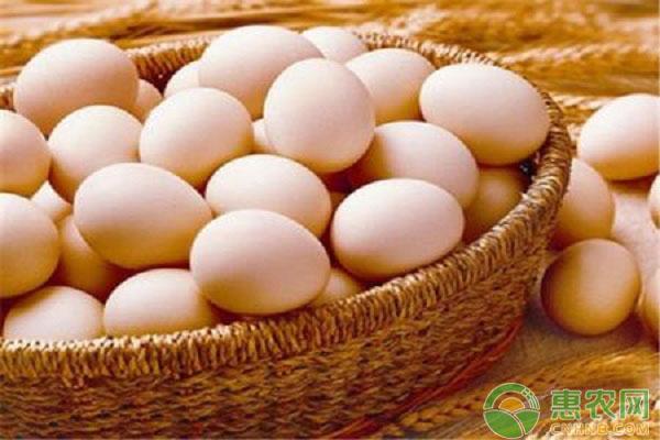 雞蛋日評:蛋價繼續小漲 期貨再度調整