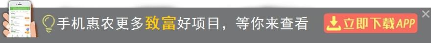 官网app 1