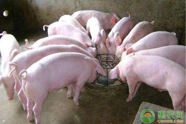 生猪日评:猪价走势疲软 多地价格仍破5