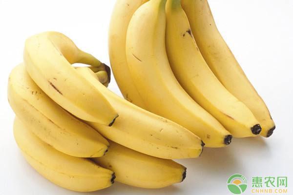 亚博竞彩APP官网_4月26日国内香蕉主产区市场收购价格