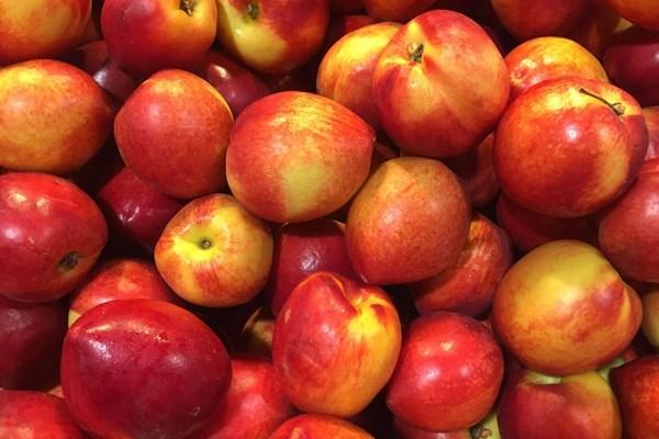 今日油桃多少钱一斤?最新油桃价格行情
