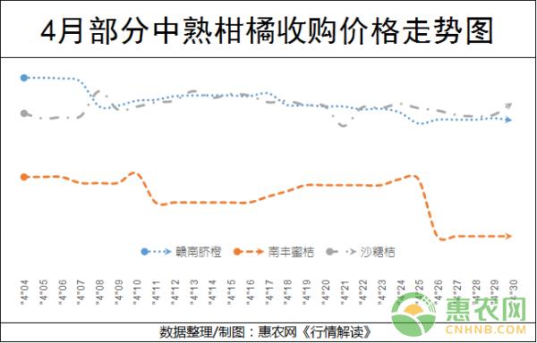 亚博竞彩APP官网_4月柑橘市场行情及价格走势报告