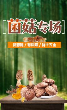 这是一张菌菇的展示图片