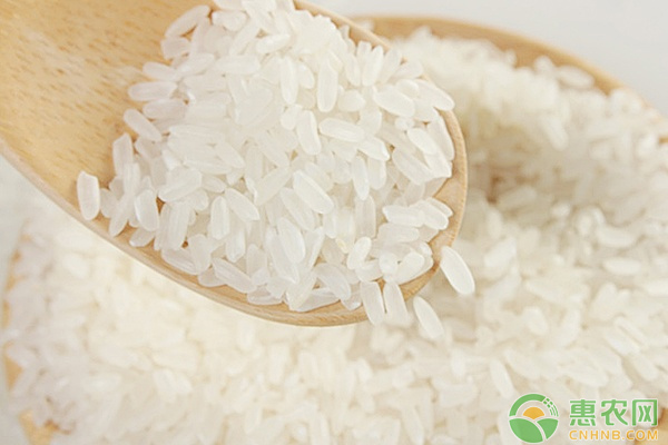 稻谷价格是否还会涨?最近稻谷收购价格行情