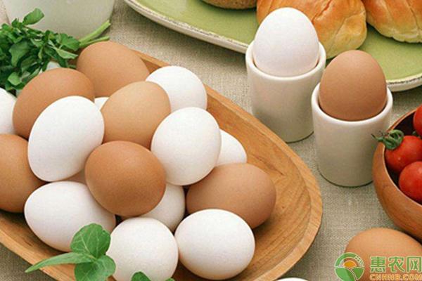 5月17日全国各地鸡蛋价格行情汇总