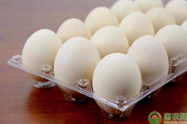 鸡蛋多少钱一斤?