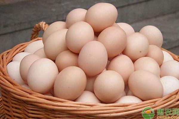 鸡蛋多少钱一斤?5月17日全国各地鸡蛋价格行情汇总