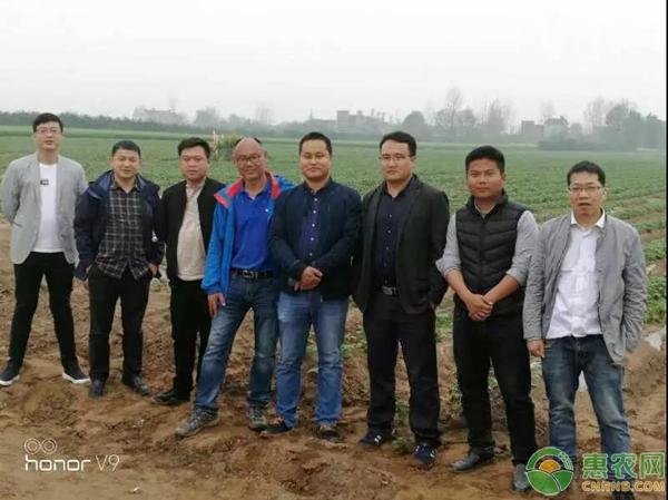 加入惠農網