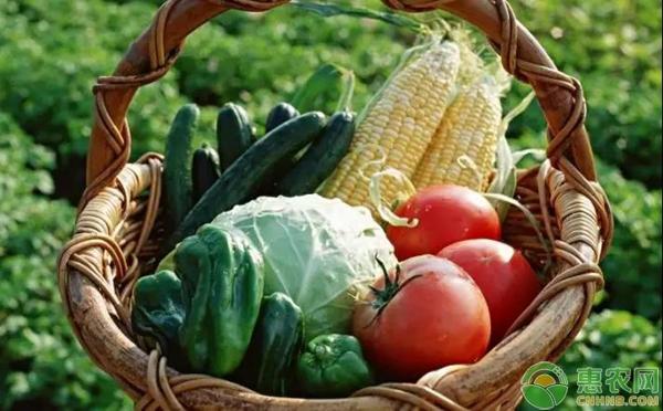从小到大一直跟农业相伴