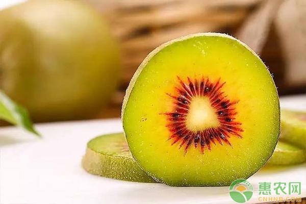 农户种植红心猕猴桃,市场价一斤30元,摇身一变成富农