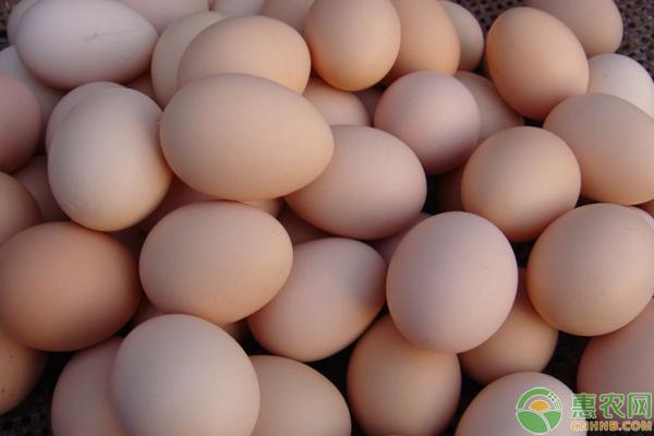 今日鸡蛋价格如何?6月14日鸡蛋价格汇总