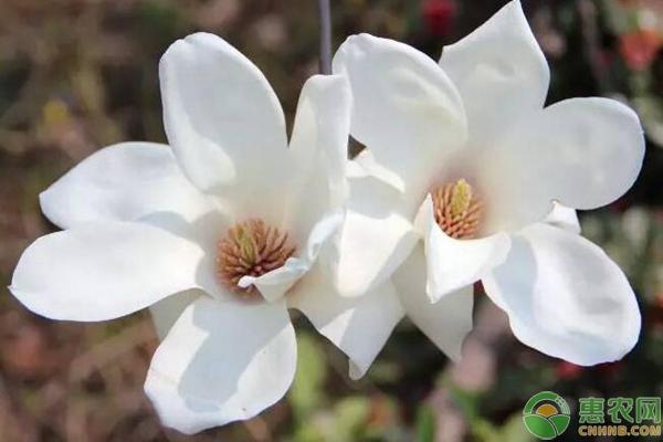 太阳网上城娱乐官网 6