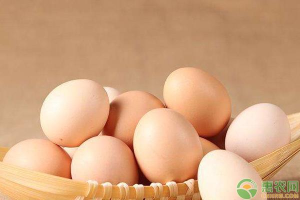 鸡蛋多少钱一斤,7月3日鸡蛋价格行情汇总