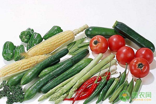 蔬菜几月份种植?蔬菜全年种植时间表