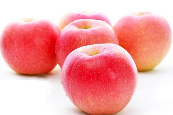 7月19日苹果主产区市场收购价格行情