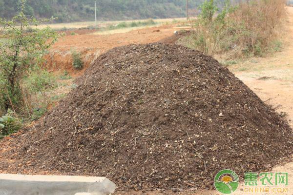 如何辨别土壤类型?这几个简单小技巧可以参考一下
