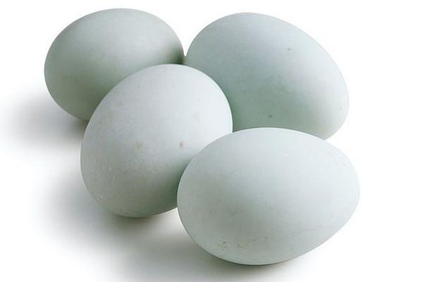 今日鸭蛋什么价?8月16日全国鸭蛋价格行情