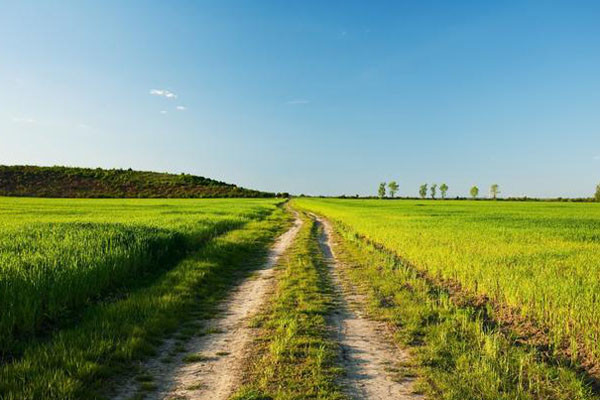 农村占地一亩补贴多少钱?农村占地的赔偿标准政策解读