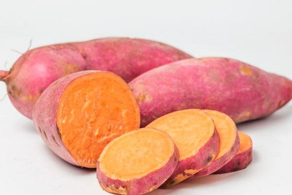 今日红薯多少钱一斤?2018红薯主产地最新收购价格行情