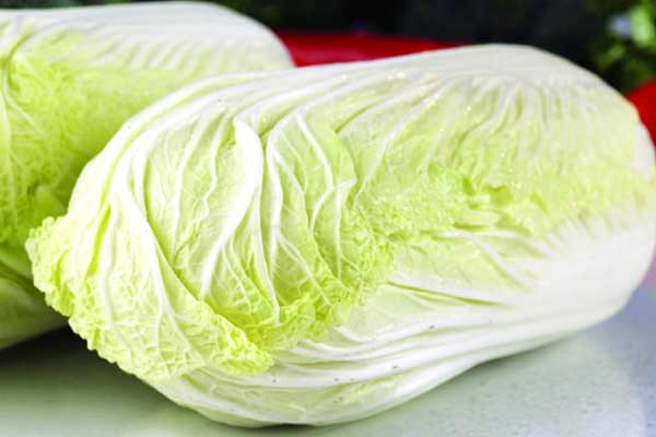 现在白菜多少钱一斤?2018白菜产区最新价格行情