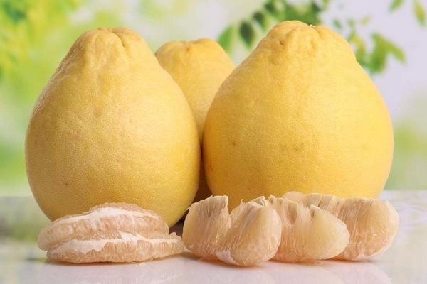 今日柚子多少钱一斤?2018年柚子主产地价格行情