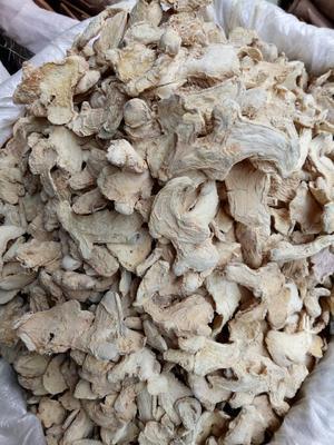 安徽亳州谯城区低硫干姜片 袋装 18-24个月